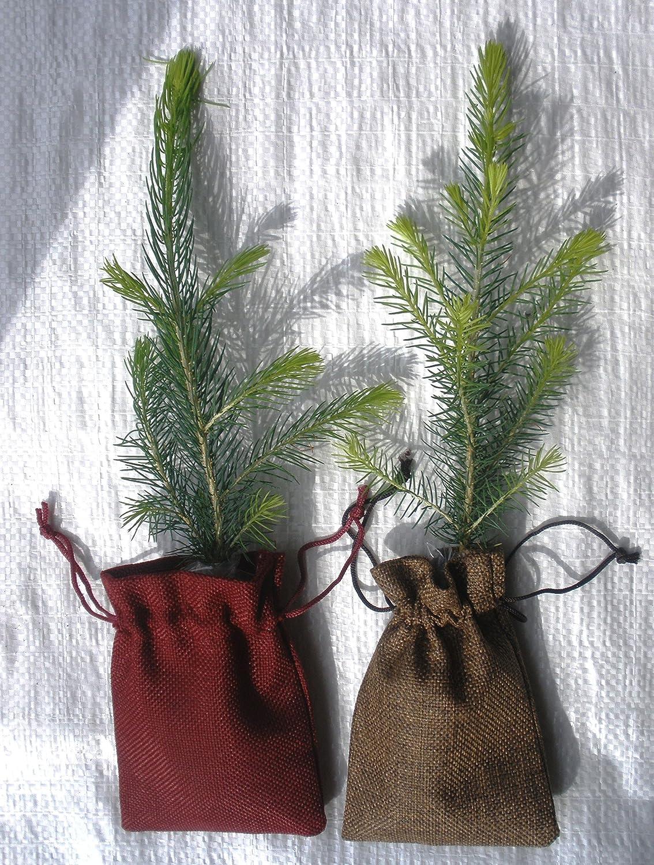 Drawstring Backpack Christmas Twig Bags