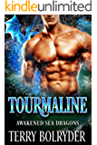 Tourmaline (Awakened Sea Dragons Book 2) (English Edition)