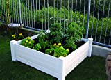 NuVue Products Raised 48 by 48 by 15-Inch Garden