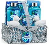 Amazon Price History for:Home Spa Gift Basket - Ocean Bliss Scent - Luxurious 9 Piece Bath & Body Set For Women & Men - Contains Shower Gel, Bubble Bath, Body Lotion, Bath Salt, 2 Soaps, Scrub, Back Scrubber & Silver Basket