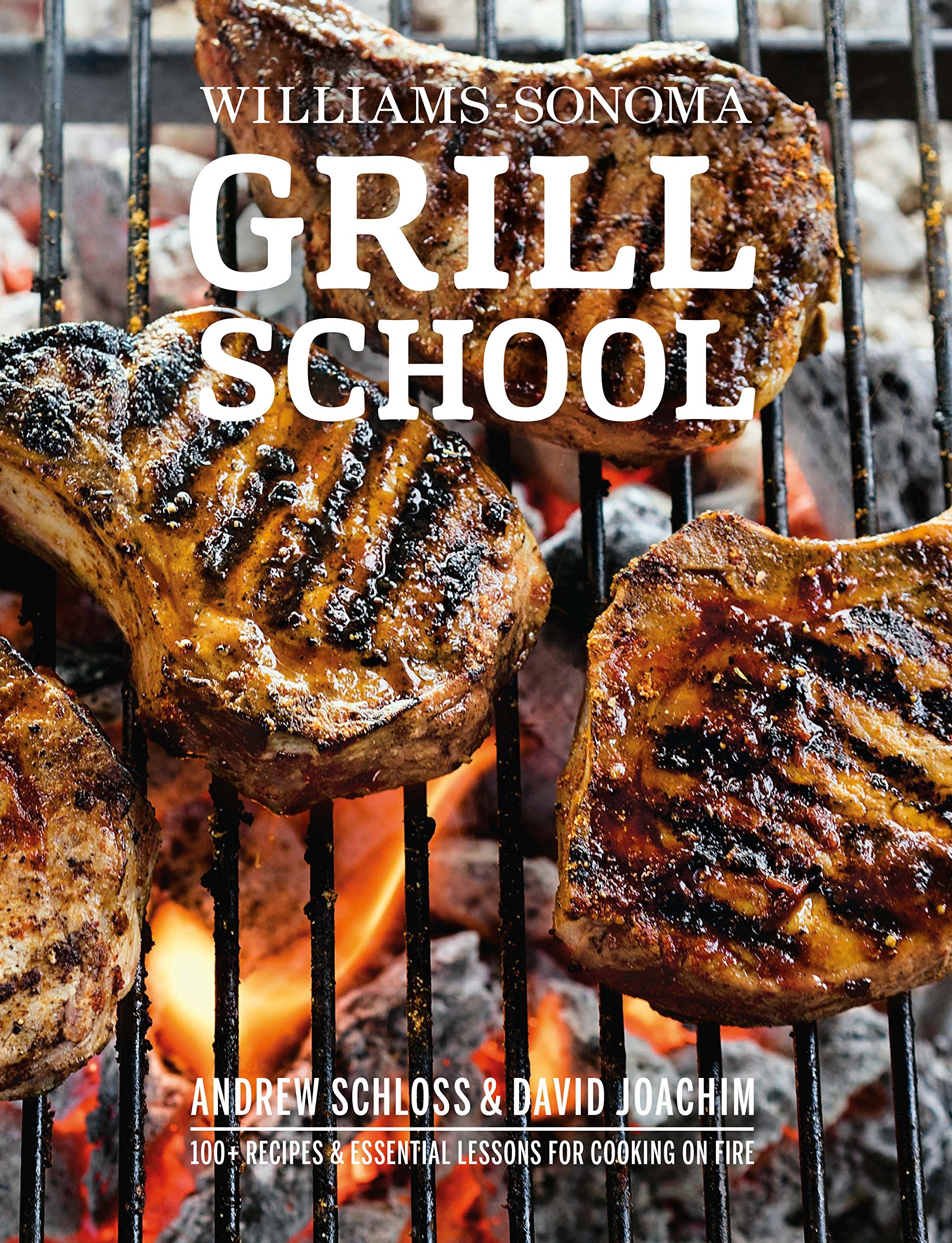 Download Grill School: 150+ Recipes & Essential Lessons for Cooking on Fire pdf epub