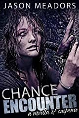 Chance Encounter: A Novella of Suspense Kindle Edition