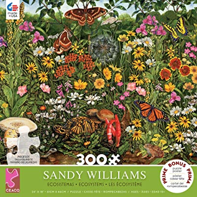 Sandy Williams Midwest Summer Puzzle - 300Piece: Toys & Games