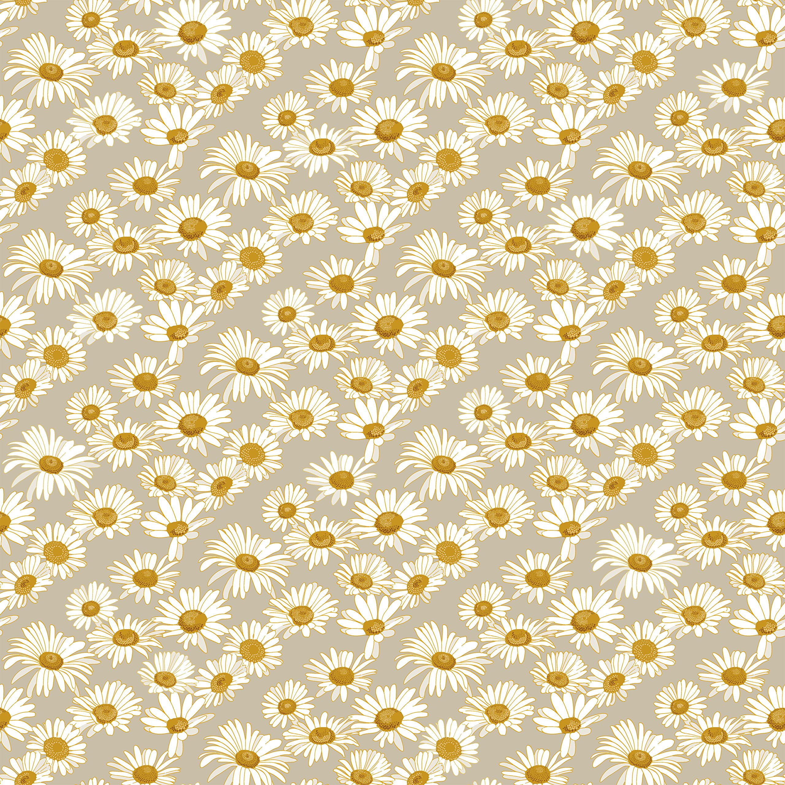 Novogratz DA477 Daisies Removable Wallpaper, 20.5'' W x 16.5' L = 28 sq.', Griege by Novogratz
