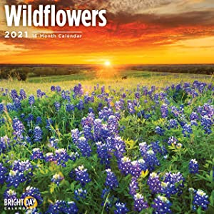 2021 Wildflowers Wall Calendar by Bright Day, 12 x 12 Inch, Nature Garden