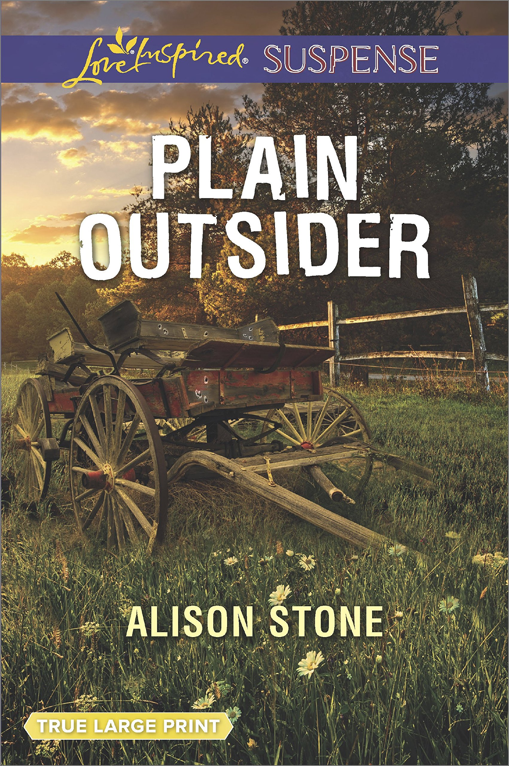 Image result for plain outsider alison stone