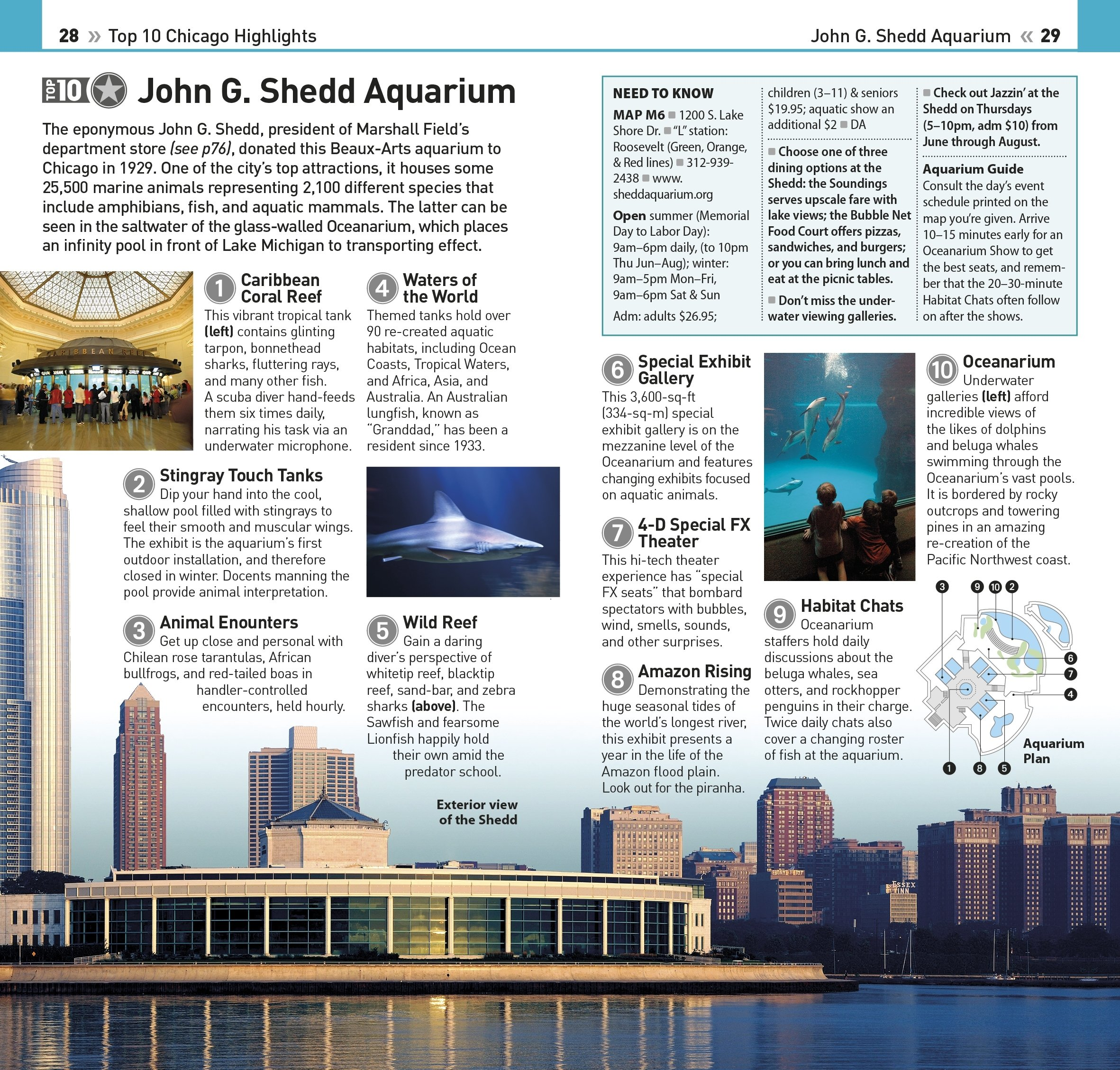 Top 10 Chicago (eyewitness Top 10 Travel Guide): Dk: 9781465457356:  Amazon: Books
