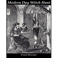 Modern Day Witch Hunt (English Edition)