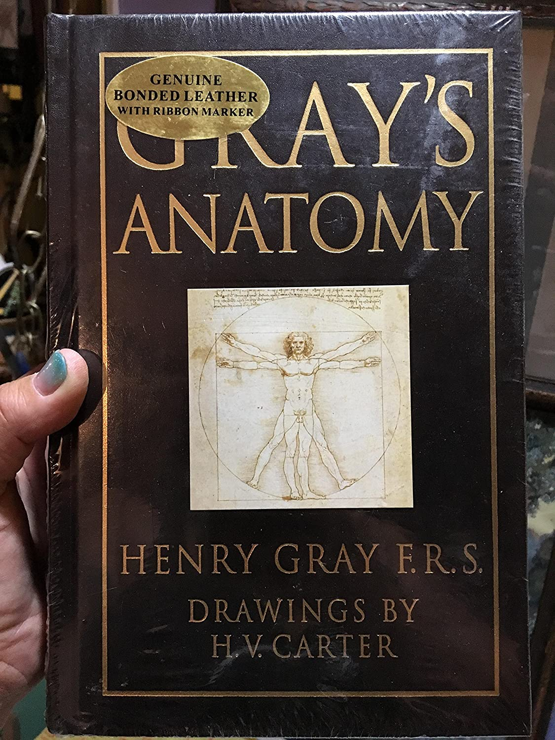 Amazon.com: Gray\'s Anatomy by Henry Gray (Leather Bound): F.R.S. ...