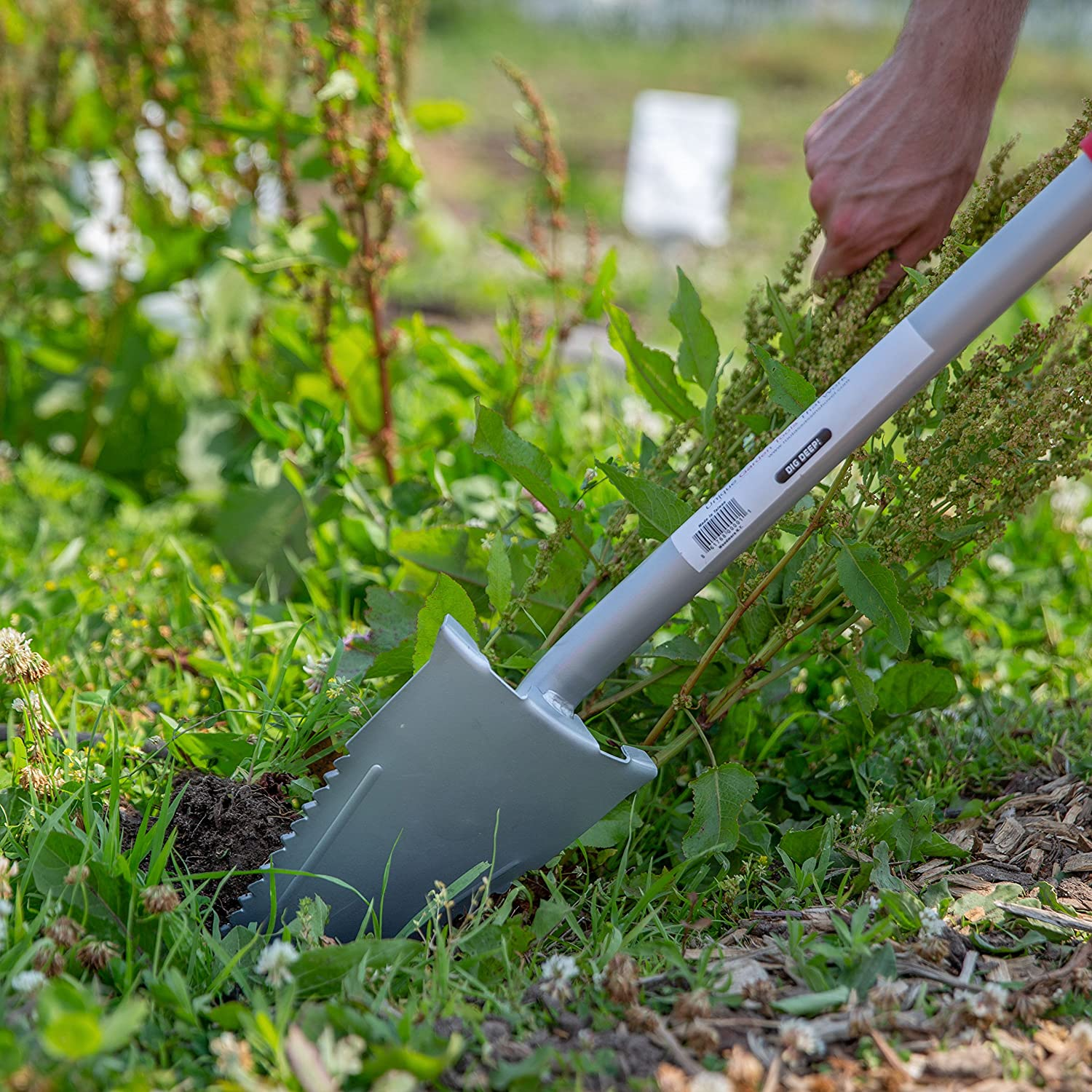 Create a perfect garden without a shovel (photo and video instructions)