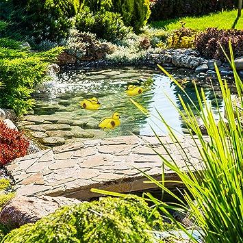 Relaxdays Figuras de Patos, Decoración para estanques o Jardines, Patitos flotantes, Plástico, Impermeable, Amarillo y Negro: Amazon.es: Jardín