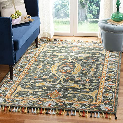 Safavieh Aspen Collection APN116X Handmade Boho Braided Tassel Wool Area Rug