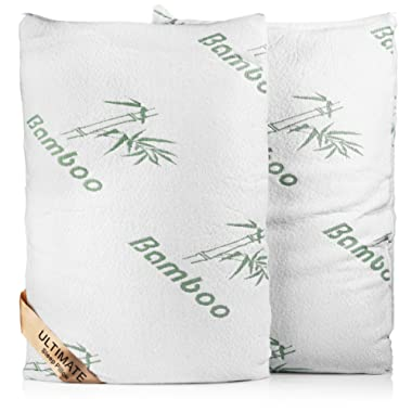 Lavish Comforts Premium Bamboo Memory Foam Pillow Queen Two Pack Ultra Cool Hypoallergenic Washable Bamboo Cover USA Designed Queen 2 Pack