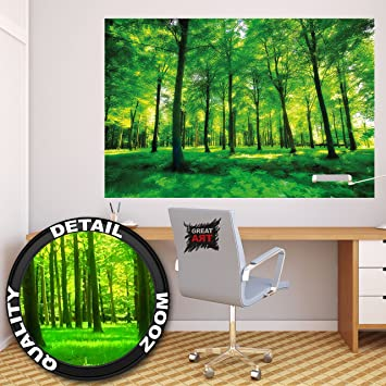 Poster Bäume Wandbild Dekoration Natur Pur Landschaft Wald Lichtung Sommer  Entspannung Sonne Pflanzen Flora Forst Farne