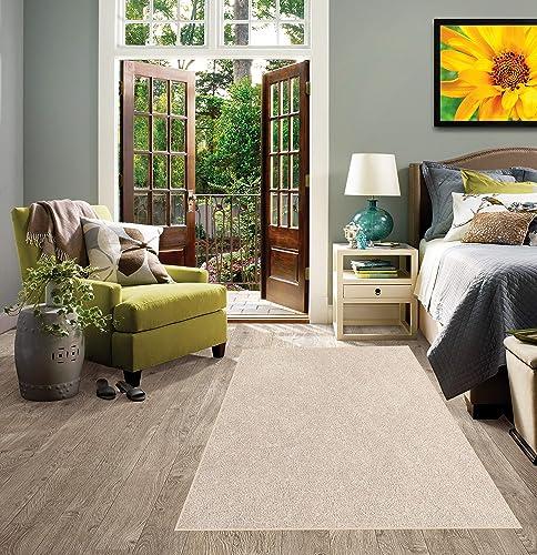 Koeckritz 6 x9 Graham Cracker Area Rug Carpet. Multiple Sizes and Shapes