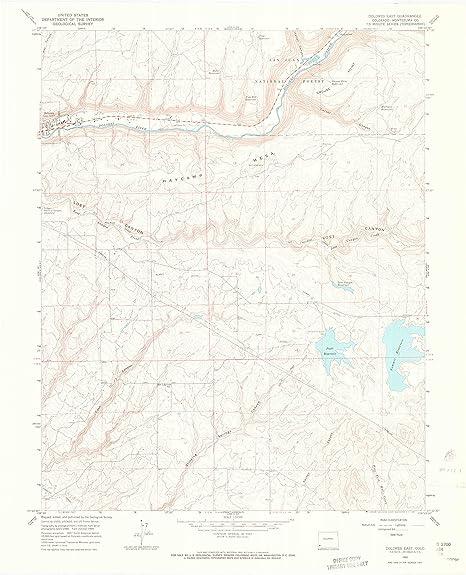 Amazon Com Yellowmaps Dolores East Co Topo Map 1 24000 Scale 7 5