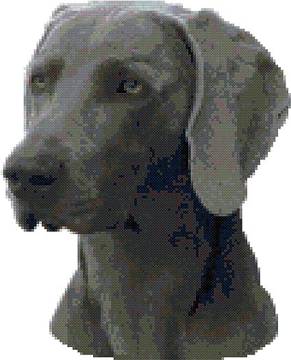Weimaraner Dog Portrait Counted Cross Stitch Pattern