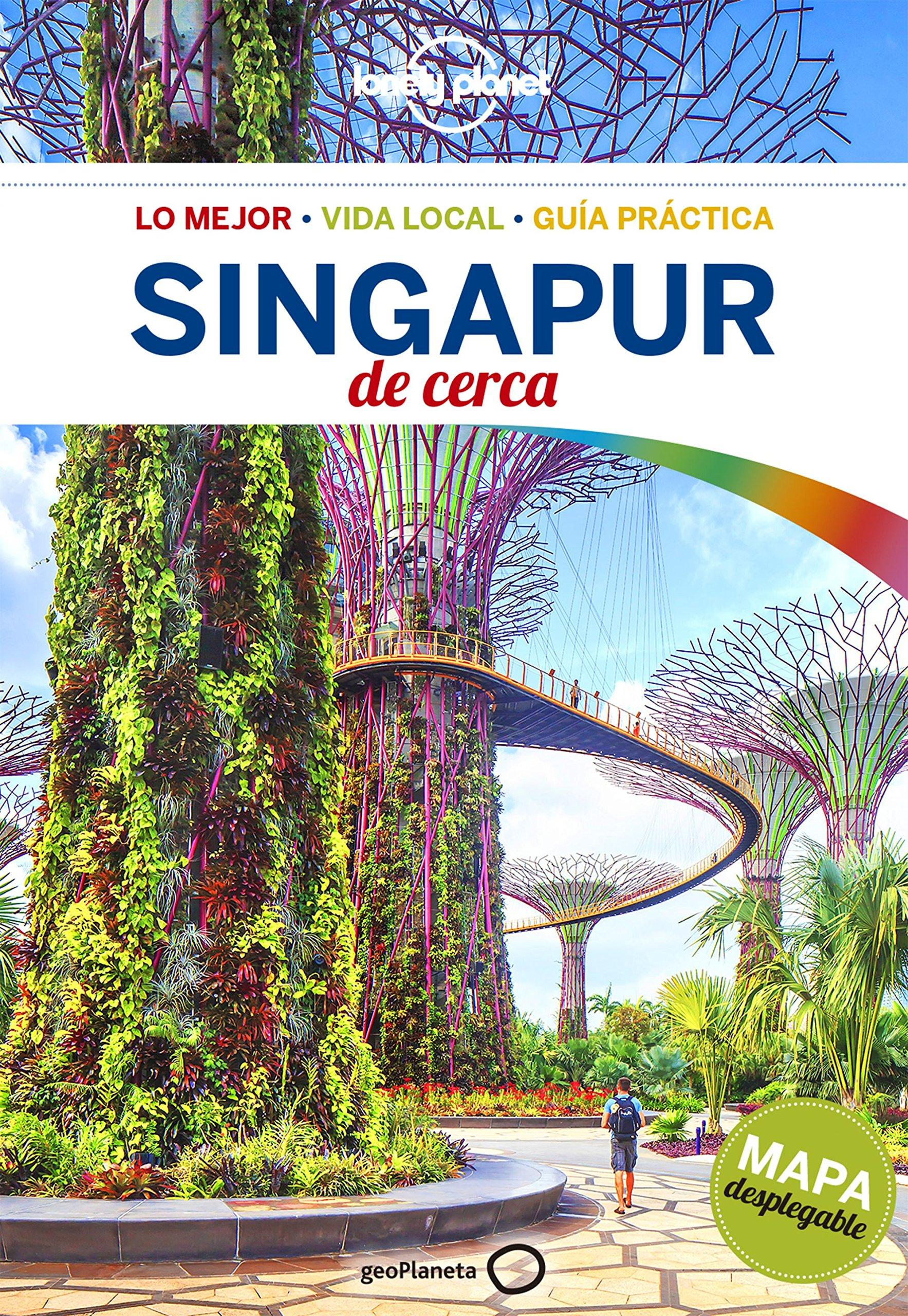Singapur de cerca 1 (Guías De cerca Lonely Planet) Tapa blanda – 20 jun 2017 Ria de Jong Cristian Bonetto Roser Soms Tramujas Marisa Morata Hurtado