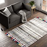 Amazon Brand – Stone & Beam Contemporary Boho Colorful Fringe Wool Area Rug, 5 x 8 Foot, Tan Multi