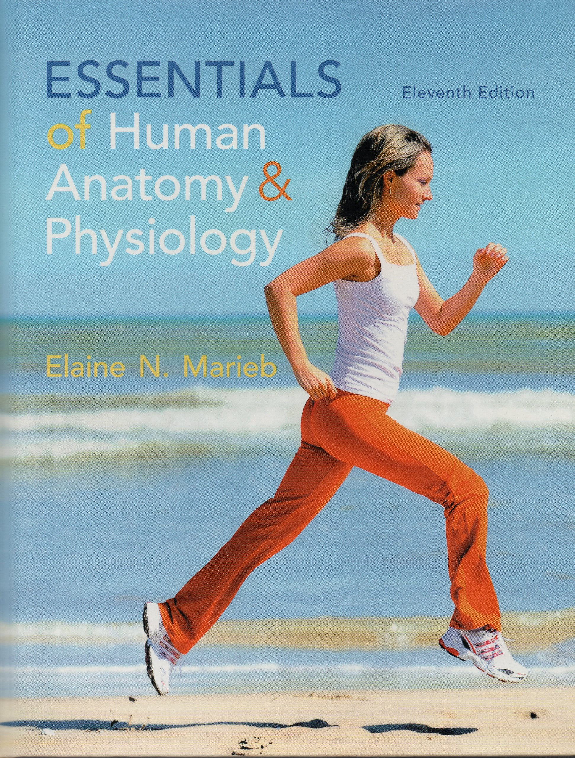 Essentials of Human Anatomy & Physiology: Elaine N. Marieb ...
