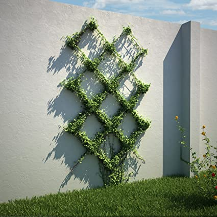Diamond Pattern Wire Trellis