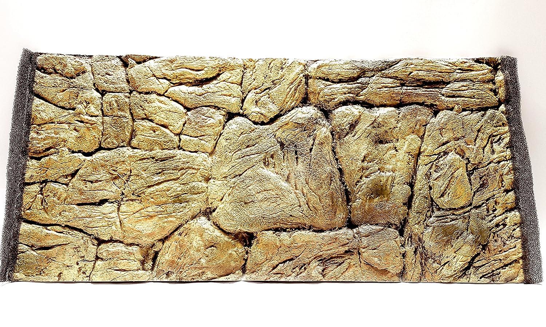 Aqua Maniac - Fondo para acuario 3D, diseño de roca fina, color beige, polirresina (no espuma), 1 a 2 cm de grosor, decoración acuática única: Amazon.es: ...