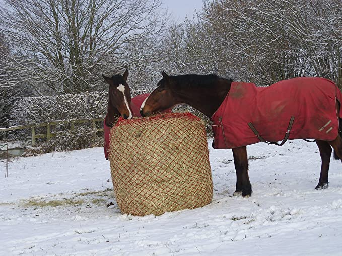 SALE TRADE Pack 5 Large Ringed Haynet Haylage Nets Horse Size Small Holes