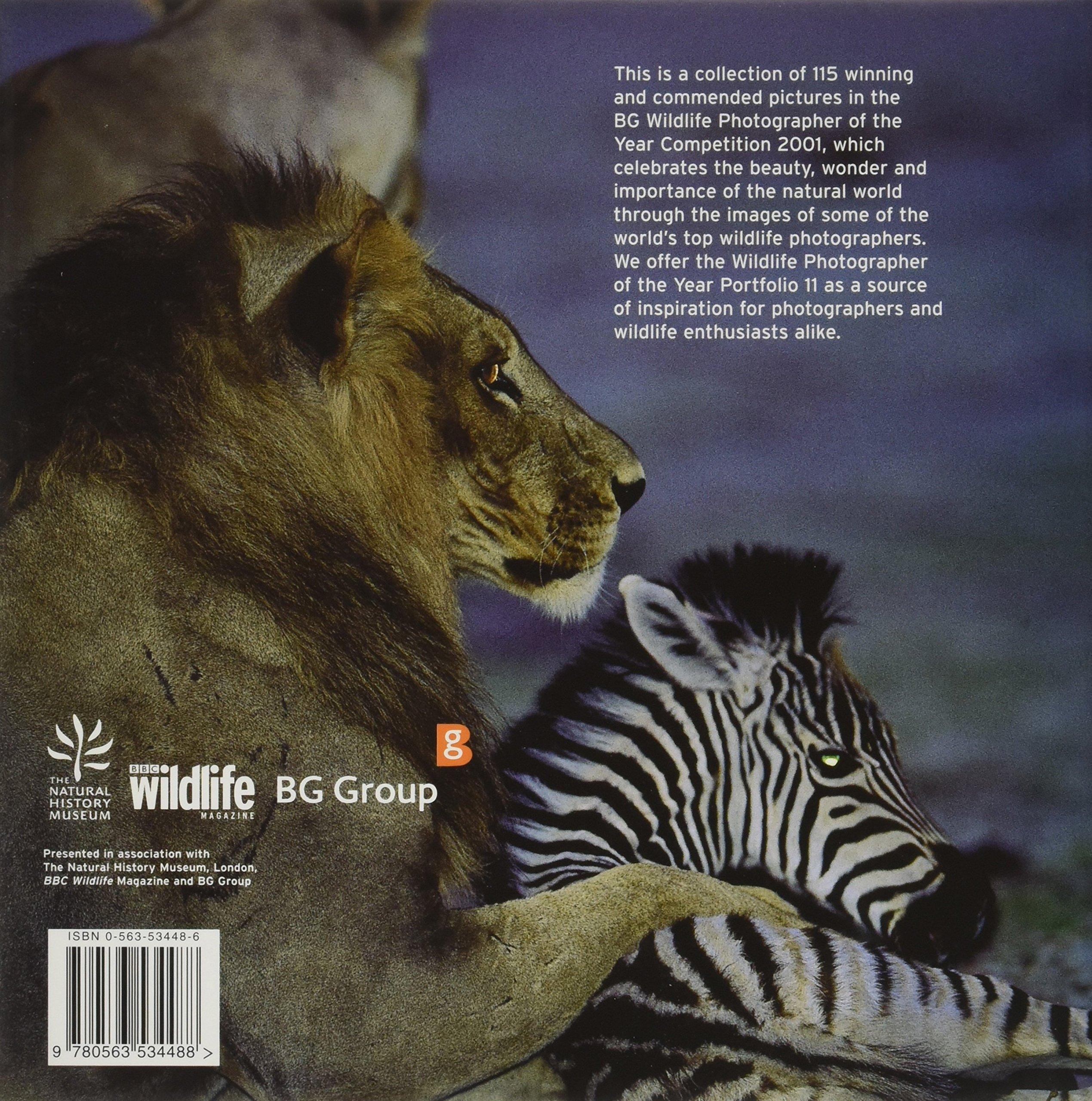 Amazon.com: Wildlife Photographer of the Year: Portfolio 11 (9780563534488): BBC Books: Books