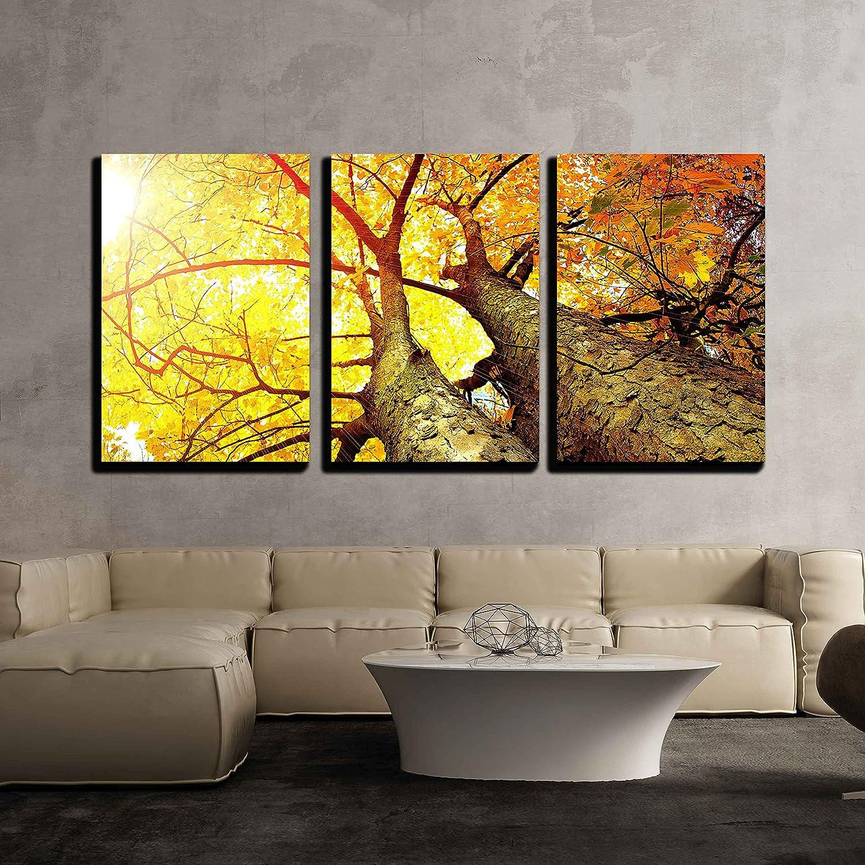 Autumn Trees Fall x3 Panels - Canvas Art | Wall26