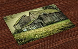 Ambesonne Country Place Mats Set of 4, Farmer Field Barn Warehouse Midwest American Style Antique Ancient Artwork Print, Washable Fabric Placemats for Dining Room Kitchen Table Decor, Multicolor