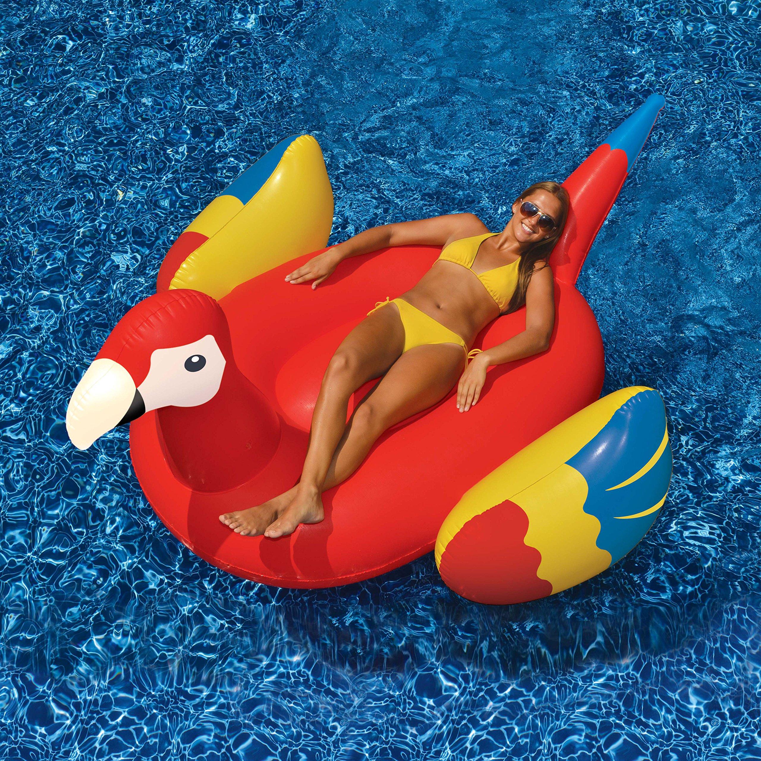 Swimline Giant White Swan/Flamingo/Black Swan/Parrot Floats for Swimming Pools (4 Pack)