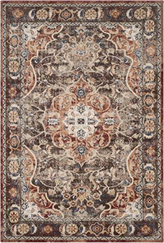 Safavieh Bijar Collection BIJ648D Traditional Oriental Vintage Brown and Rust Area Rug 9 x 12