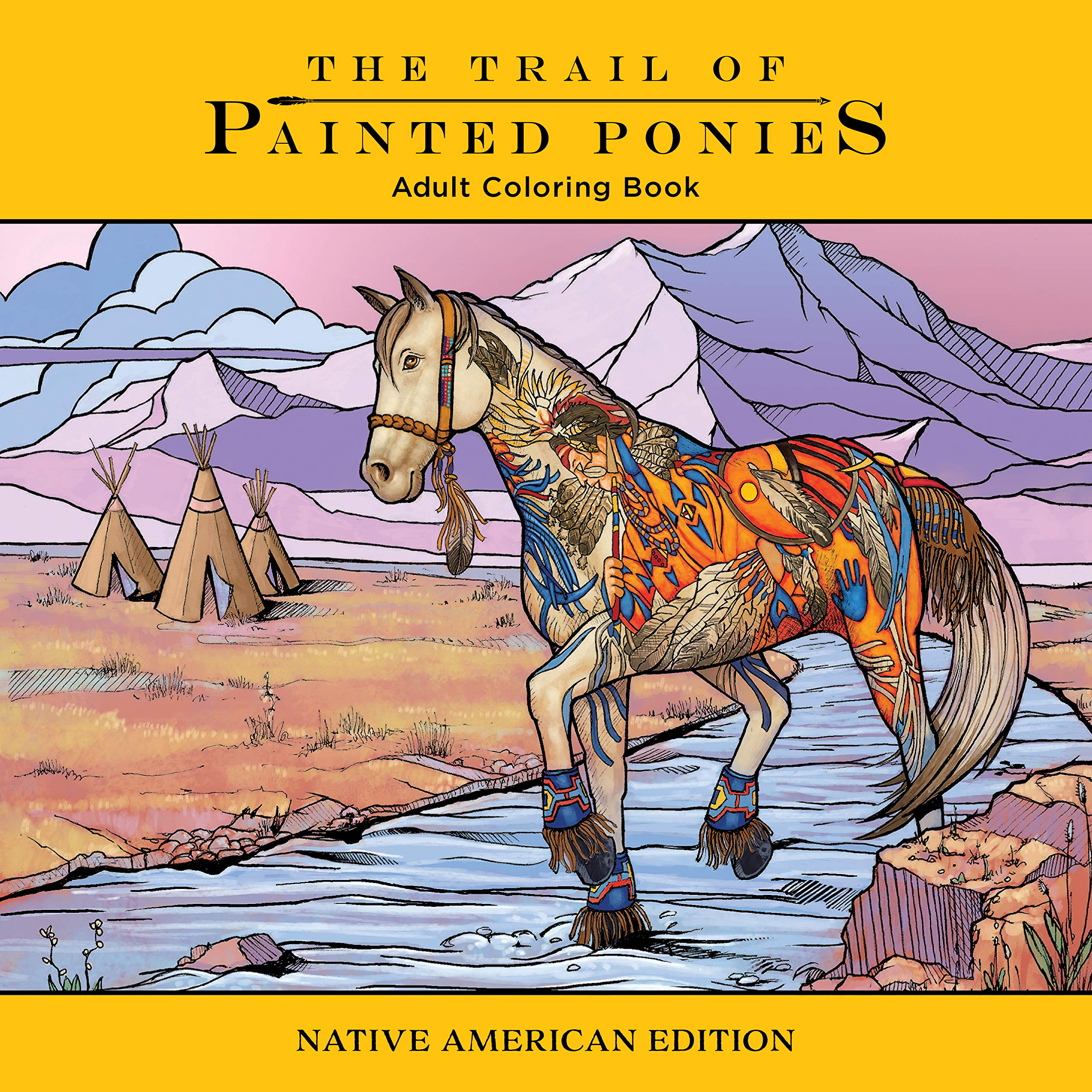 - Amazon.com: Trail Of Painted Ponies Coloring Book: Native American