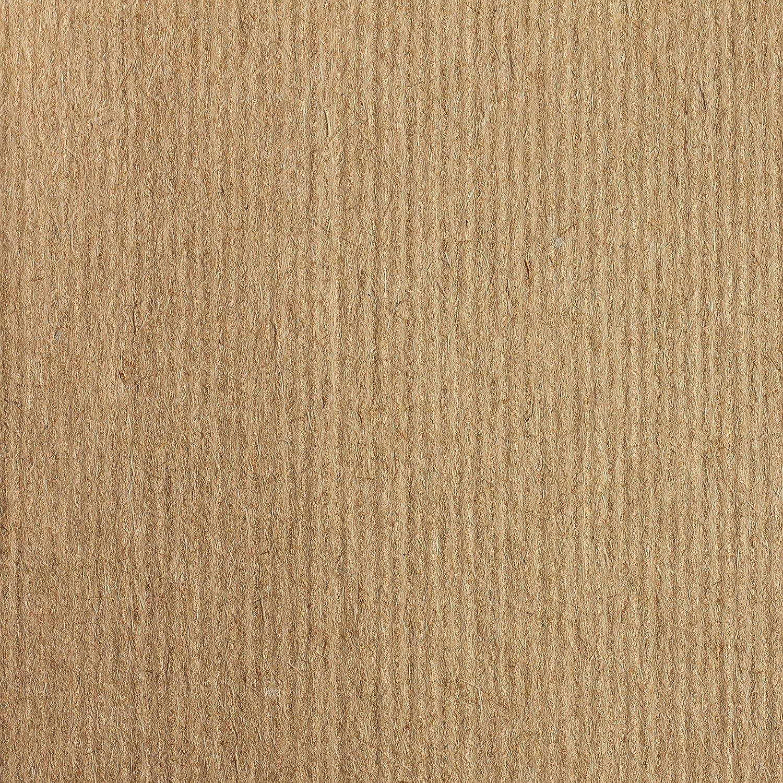 CLAIREFONTAINE 396004C - Une Rame de papier KRAFT BRUN VERGE 21x29,7 cm 100 Feuilles 90 g C Rhodia Jardinage