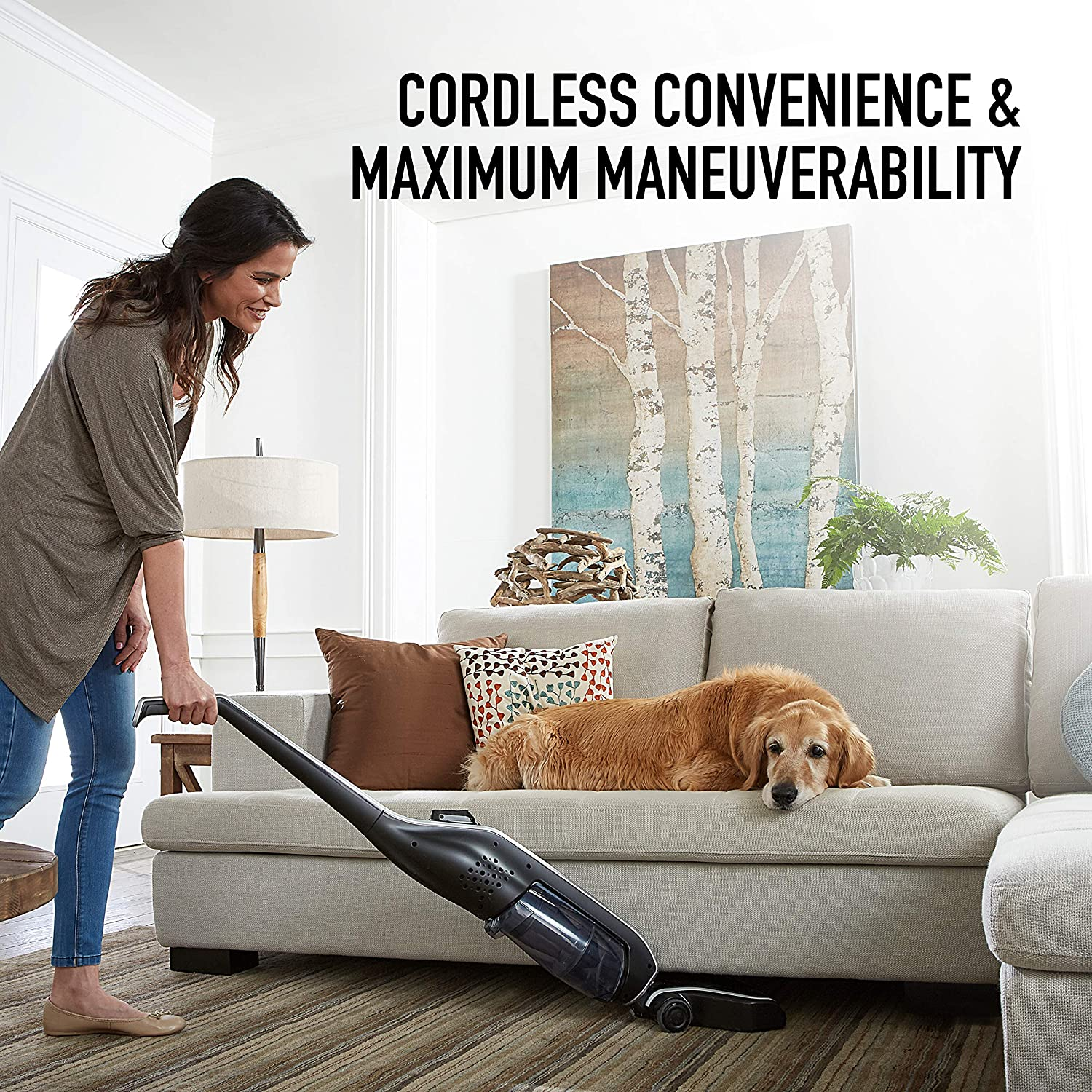 Hoover Linx Cordless Stick Vacuum Cleaner, Lightweight, BH50010