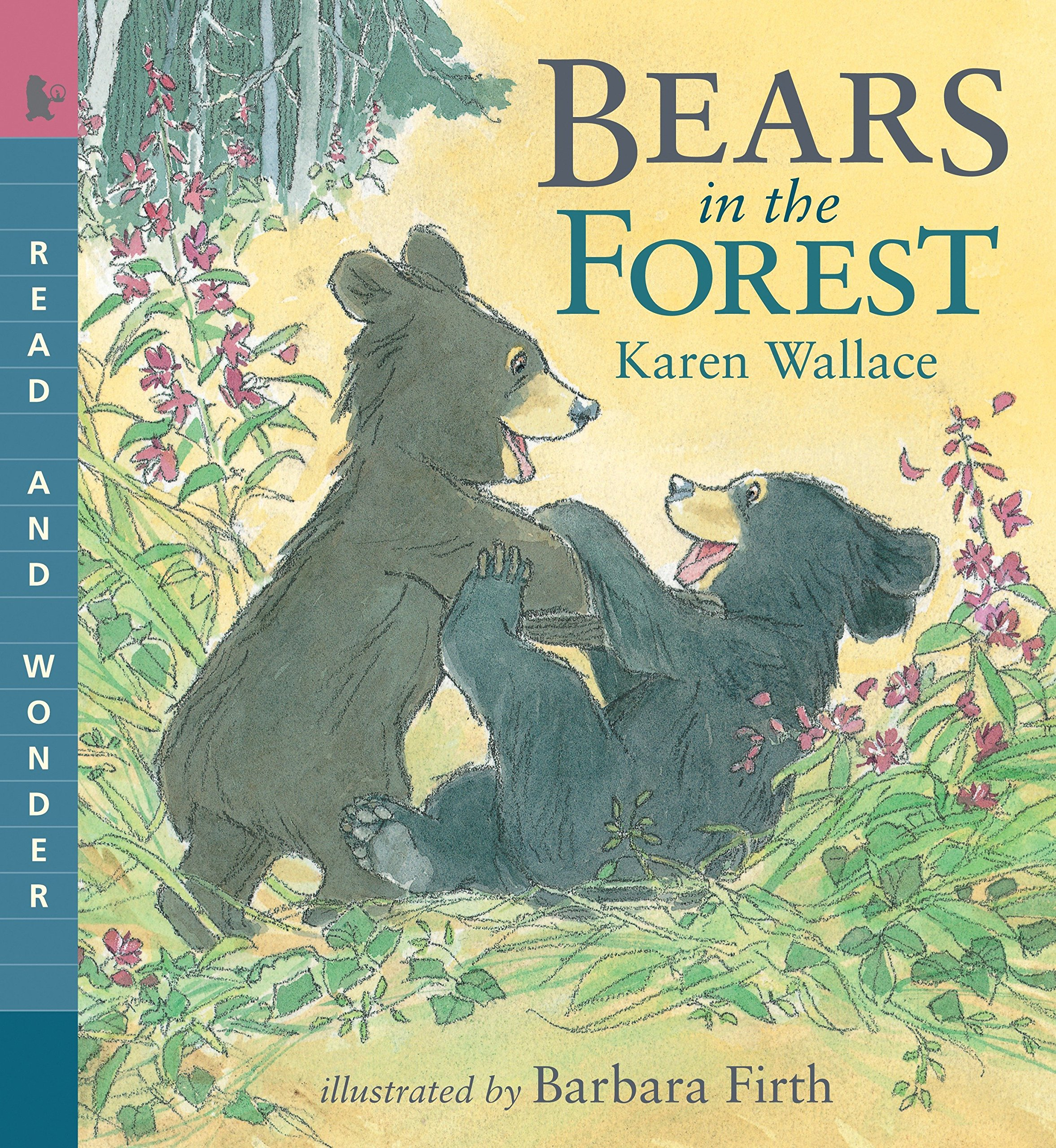 Download Bears in the Forest: Read & Wonder (Read and Wonder) pdf epub