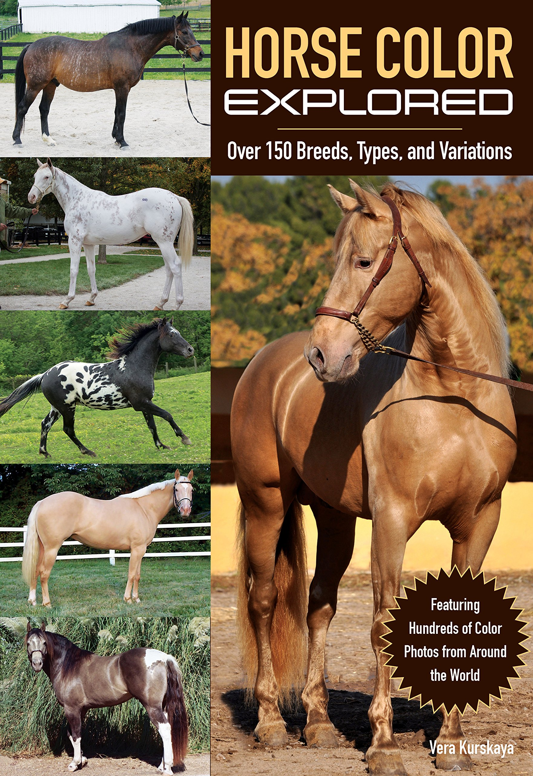 Horse color explored over 150 breeds types and variations vera horse color explored over 150 breeds types and variations vera kurskaya michal prochazka 9781570767319 amazon books nvjuhfo Choice Image