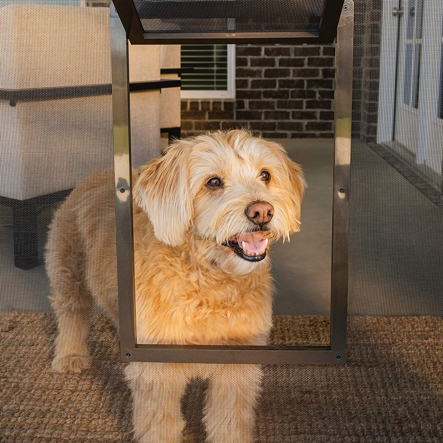 PetSafe Pet Screen Door - Dog and Cat Flap for Screen Door, Small, Window, Storm Door and Porch Use : Pet Door For Screen : Pet Supplies
