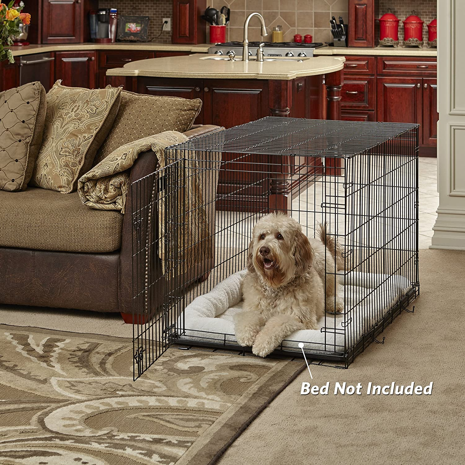 Large Dog Crate MidWest Life Stages Folding Metal Dog Crate Divider Panel, Floor Protecting Feet, Leak-Proof Dog Tray 42L x 28W x 31H Inches, Large Dog