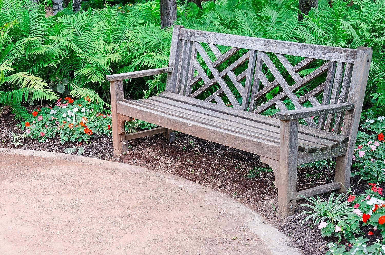 Limpiador restaurador Teca de Madera para Muebles de jardín W203-10L: Amazon.es: Jardín