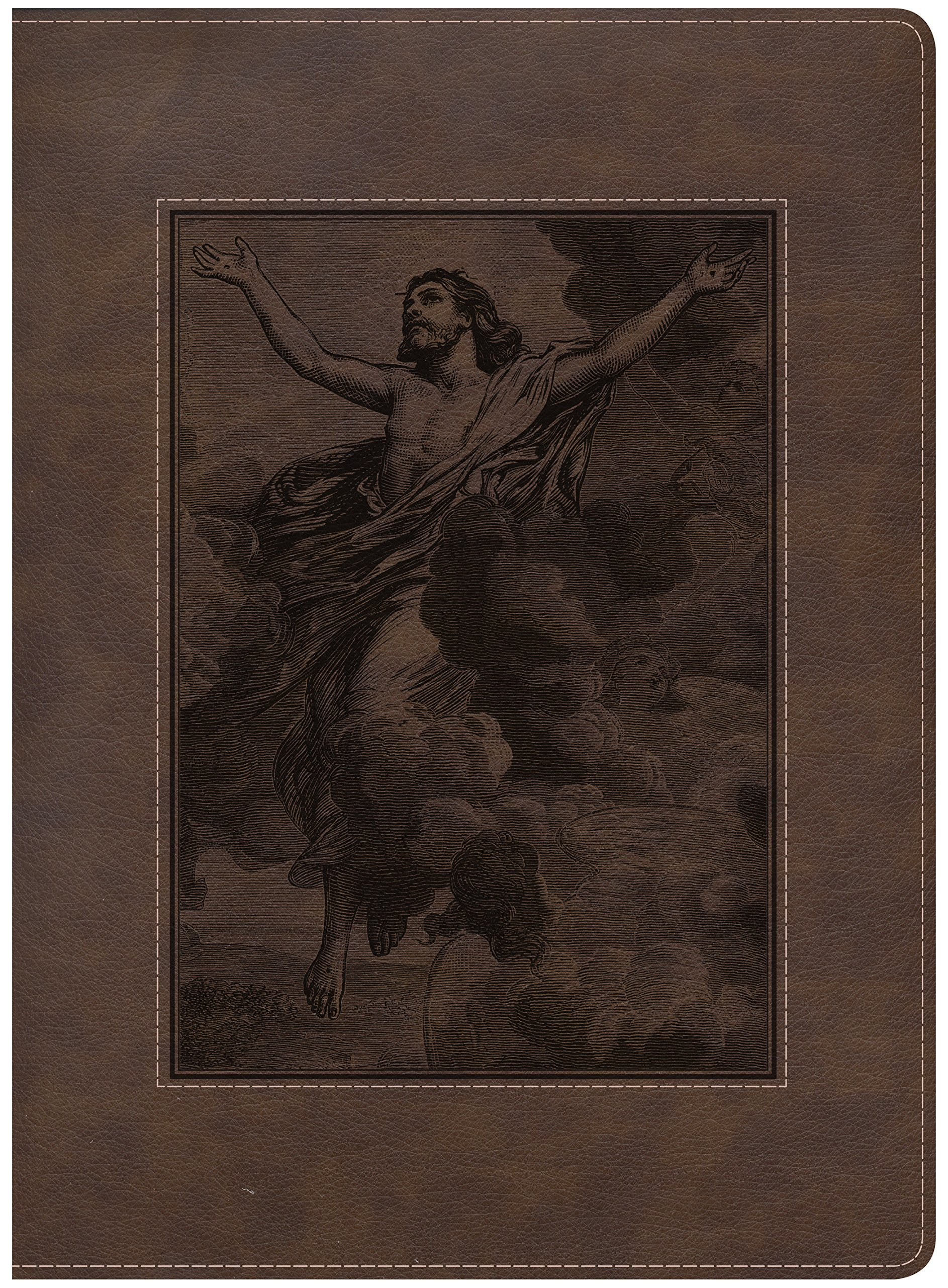 The Gospel Project Bible, Christ Ascending, Brown LeatherTouch ebook