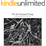 The Ten Thousand Things (English Edition)