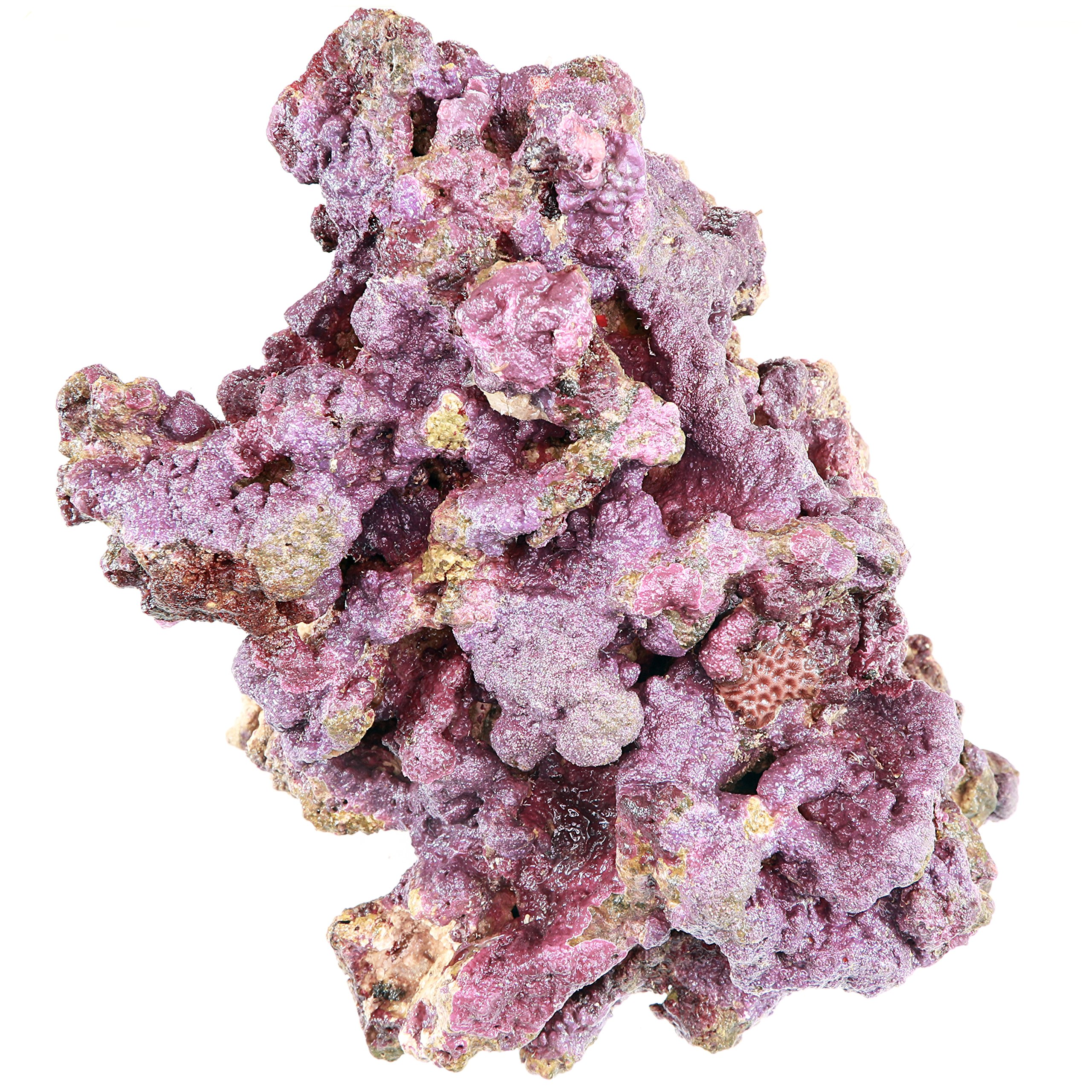 ARC Reef Premium Live Rock for Saltwater Aquariums, 45 lbs.