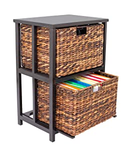 BirdRock Home Abaca 2 Tier File Cubby Cabinet | Vertical Storage Furniture | 2 Drawers | Office Décor | Home Decorative Box Filing | Natural Wood | Delivered Fully Assembled | Hanging Letter and Legal