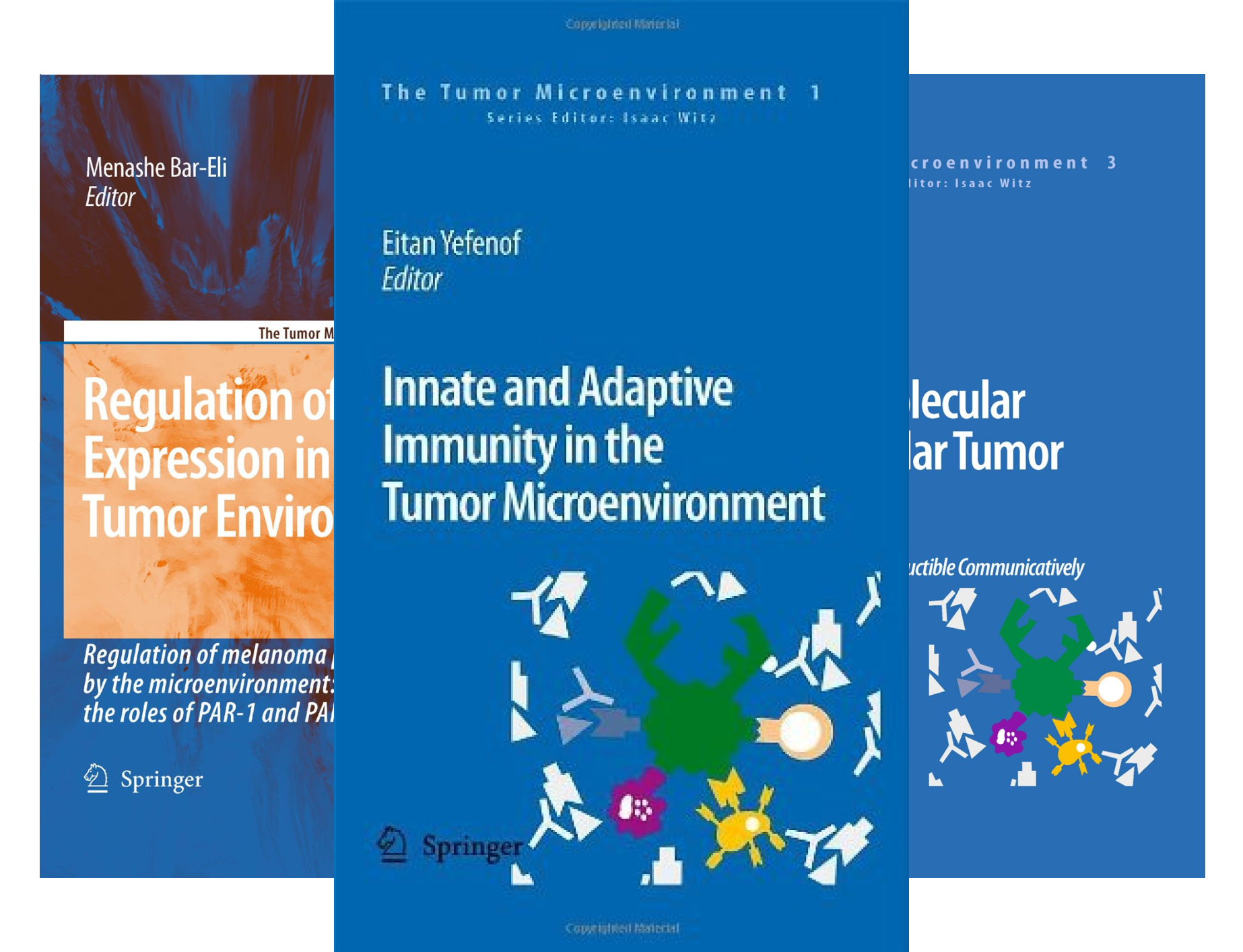 The Tumor Microenvironment (5 Book Series)