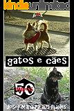 gatos e cães (50 imagens)