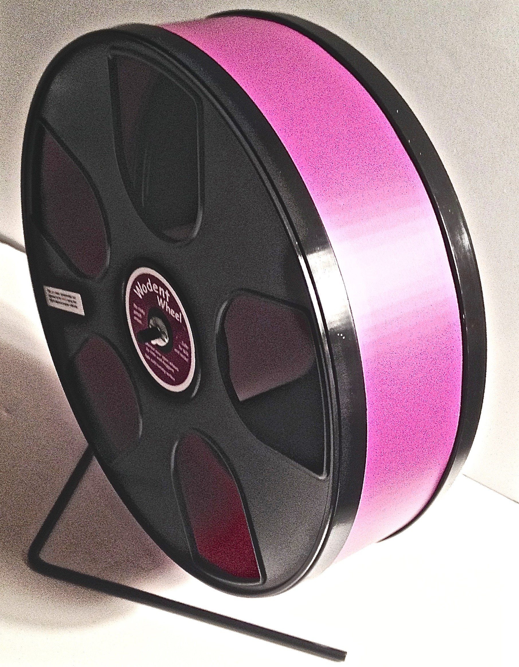SUGAR GLIDER/SMALL PET 11'' DIAMETER EXERCISE WHEEL- BLACK PANELS WITH BURGUNDY TRACK