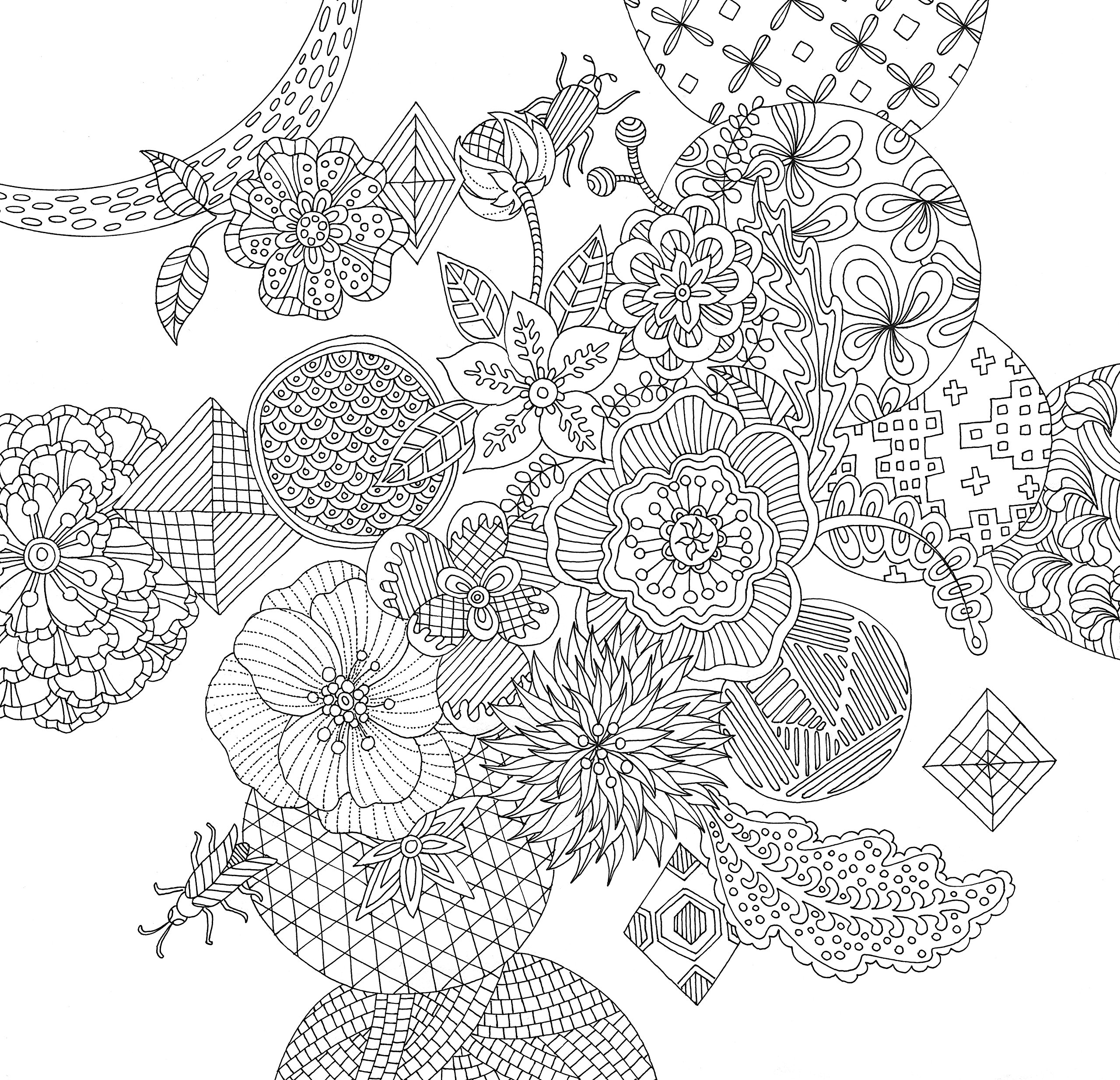 Zen coloring books for adults app - Zen Garden Adult Coloring Book 31 Stress Relieving Designs