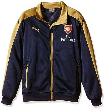 a6508d3b1218 Puma Children s Arsenal Football Club Stadium with Sponsor Black Black Iris-Victory  Gold Size