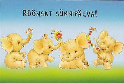 Amazon Estonian Childrens Birthday Cards Pk10 2 Designs In Pack